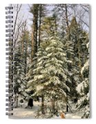 Deep In The Maine Woods Spiral Notebook