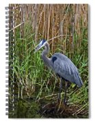 Deep In The Swamps Spiral Notebook
