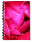 Deep Inside The Rose Spiral Notebook