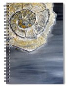 Deep Ocean Seashell Spiral Notebook
