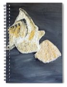 Deep Ocean Seashells Spiral Notebook