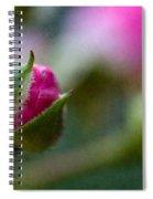 Deep Pink Rose Bud - Rose Bud Spiral Notebook