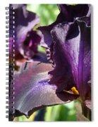 Deep Purple Irises Dark Purple Irises Summer Garden Art Prints Spiral Notebook