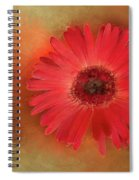Deep Shaded Daisy Spiral Notebook