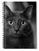 Deep Stare Spiral Notebook