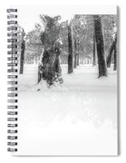 Deep Winter II Spiral Notebook
