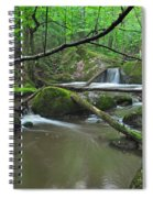 Deep Woods Stream 2 Spiral Notebook