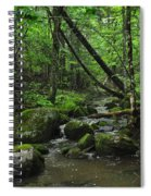 Deep Woods Stream 3 Spiral Notebook