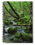 Deep Woods Stream Spiral Notebook