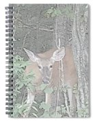Deer By The Tree Line Spiral Notebook