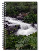 Deer Creek 07 Spiral Notebook