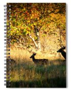 Deer Family In Sycamore Park Spiral Notebook