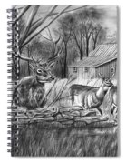 Deer Field  Spiral Notebook