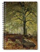 Deer In A Wood Spiral Notebook