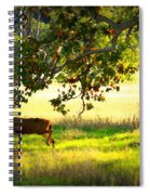 Deer In Autumn Meadow - Digital Painting Spiral Notebook