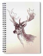 Deer In Ink Spiral Notebook