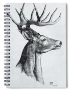 Deer Spiral Notebook