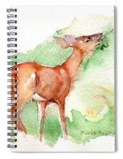 Deer Painting In Watercolor Spiral Notebook