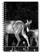 Deer Tracks Spiral Notebook