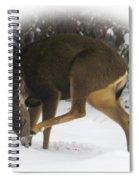 Deer With An Itch Spiral Notebook