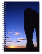 Delicate Arch At Twilight Spiral Notebook