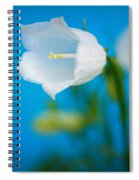 Delicate Bells Spiral Notebook