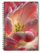Delicate Spiral Notebook