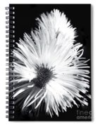 Delicate Fleabane Daisy Spiral Notebook