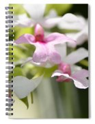 Delicate Orchids By Sharon Cummings Spiral Notebook