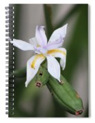 Delicate Pale Purple Iris Spiral Notebook