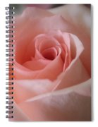 Delicate Pink Rose Spiral Notebook