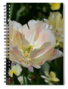 Delicate Pink Tulip 2 Spiral Notebook