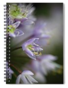 Delicate Purple Flowers Spiral Notebook