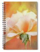 Delicate Rose On Color Splash Spiral Notebook