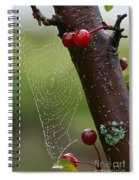 Delicate Spider Weave Spiral Notebook
