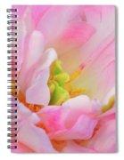 Delicate Tutu Spiral Notebook