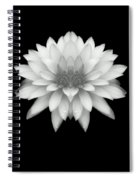 Delicate White Petals Spiral Notebook