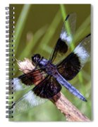 Delicate Wings Of A Dragonfly Spiral Notebook