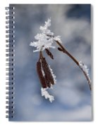 Delicate Winter Spiral Notebook