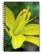 Delicate Yellow Oriental Lily Spiral Notebook