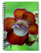 Delicately Veined ... With Tentacles Spiral Notebook