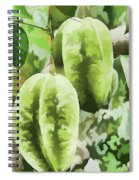 Delicious Star Fruit Spiral Notebook