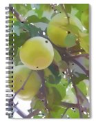 Delicious Yellow Apple In Summer Spiral Notebook