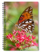 Delight Spiral Notebook