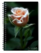 Delight In Beauty Spiral Notebook