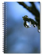 Delighted By Droplets Spiral Notebook