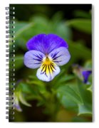 Delightful Colors Spiral Notebook