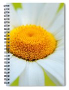 Delightful Daisy Spiral Notebook