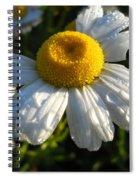 Delightful Dew Drops Spiral Notebook