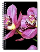 Delightful Orchid Spiral Notebook